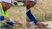 Man helps squirrel drink water from bottle in heartwarming viral video. Don't miss the message
