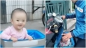 Delivery man in China takes baby daughter to work, carries her in open box. Viral video