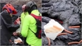 People cook hot dogs and egg on molten lava in Iceland in viral video. Watch