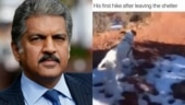 Anand Mahindra shares how he will celebrate once lockdown is over. Watch viral video