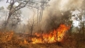 Fire breaks out on Bangalore University campus, emergency responders at scene