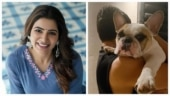 Samantha sends love to fans with cute pic of Naga Chaitanya and pet Hash
