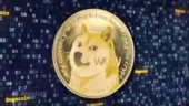 Dogecoin jumps sharply, is up by over 112 per cent days after Elon Musk tweet