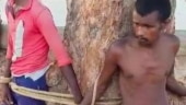 Odisha: 3 men tied to tree for stealing water pump in Mayurbhanj