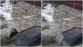 Couple was sitting inside their car when ice block fell on it. Viral video shows what happened next