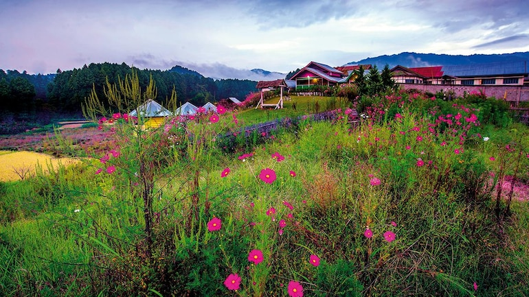 Aiming high: Can Arunachal Pradesh save itself from tourism success?