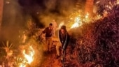 Try artificial rain to douse wildfires: Court to Uttarakhand govt