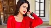 Shakti Astitva Ke Ehsaas Ki actress Jigyasa Singh tests Covid positive. Read post