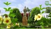 100% placement recorded for Jamia Millia Islamia MSc BFA students