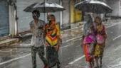 Light rain likely in Delhi in next few days: IMD