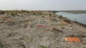 UP: Stench of unclaimed bodies buried along banks of river Ganga haunts villagers