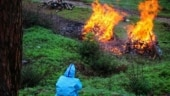 India Today refutes Uttarakhand govt's claims, stands firmly by its report on mass cremations in Almora forest