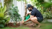 Allu Arjun encourages people to plant saplings on World Environment Day. See pic