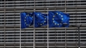 EU eyes tighter rules for 'renewable' biomass energy-draft