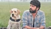Rakshit Shetty unveils 777 Charlie teaser on 38th birthday. Watch