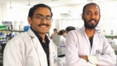 IIT Mandi researchers show conclusively how excess sugar intake causes fatty liver disease