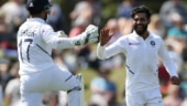 Ravindra Jadeja can hit a footmark even if it is the size of a roti consistently, says David Warner