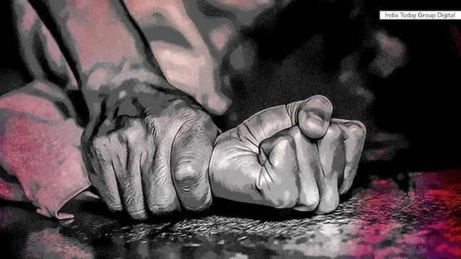 9-yr-old raped, murdered, forcibly cremated in Delhi; accused tell parents  she died of electrocution - Cities News