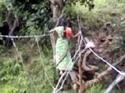 Rope bridges leave Orissa villagers at God's mercy