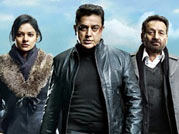 Vishwaroopam screening halted midway in Hyderabad theatre