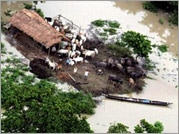 Nearly one lakh displaced due to heavy rains in Assam