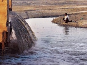 SC to Centre: Will Ganga be cleaned in this century or not?