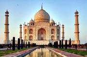 Shocking: Insect infestation is giving Taj Mahal an ugly green hue