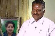 Tamil Nadu government is controlled by Sasikala's family: O Panneerselvam