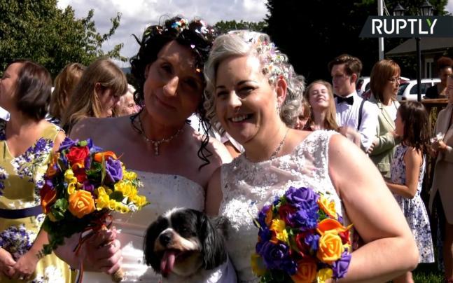 Nispel singh rane wedding bands