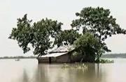 Bihar floods claim over 150 lives; situation still critical in Assam, UP