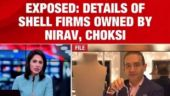 The investigative agencies are zeroing in on the 126 shell companies formed by Nirav Modi and Mehul Choksi