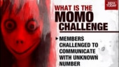 After Blue Whale, Momo game spreads fear