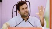 BJP, Congress spar over Rahul Gandhi's Kailash Mansarovar Yatra visit
