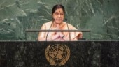 India slams Pakistan at UNGA