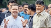 Rahul Gandhi with Chandrababu Naidu