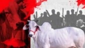 Kamal Nath govt invokes NSA for cow slaughter: Are terrorists and cow-slaughters in the same league?