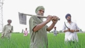 Can farmers income support scheme heal wounds of demonetisation?