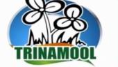 Trinamool removes Congress from its logo