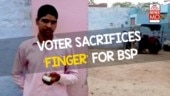 BSP supporter 'mistakenly' voted for BJP, chopped off his own finger! | NewsMo