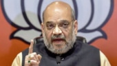 Amit Shah likely to continue as BJP chief till December: Sources