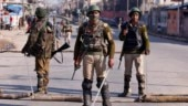 My Take on Article 370: Palestine or Shangri-La? Suspend judgement on J&K, avoid fear-mongering