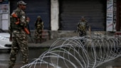 J&K Article 370: Uneasy calm prevails in Valley ahead of Eid