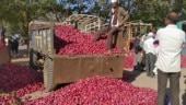Spike in onion prices making consumers cry