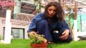 Sanjivani actress Surbhi Chandna celebrates eco-friendly birthday