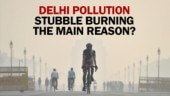 Crop burning the reason behind increase in Delhi pollution?