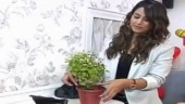 Hina Khan celebrates eco-friendly birthday