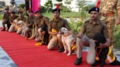 7 canines retire from CISF after completing successful tenure