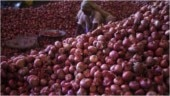 Thieves now skip cash to loot onions as prices surge across country