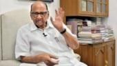NCP vs Sena over Koregaon case continues