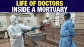 What happens inside a mortuary?